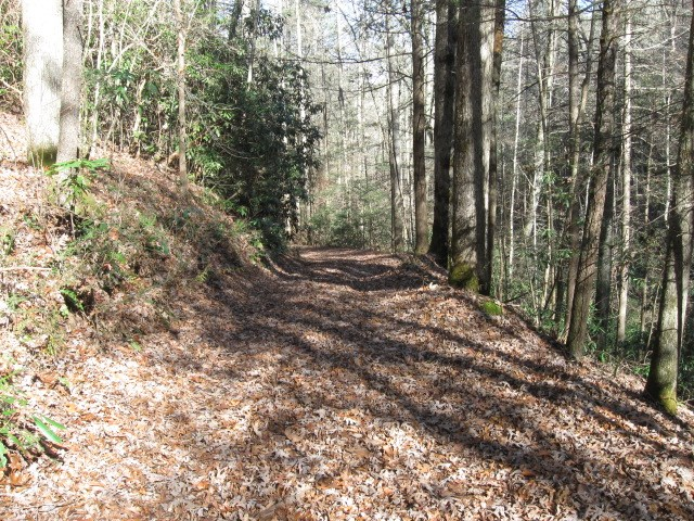 Old Logging Road will be improved